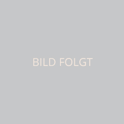Holger Gaa